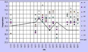 Gráfico 2: Comparação entre as temperaturas registradas em campo e no aeroporto local, pela manhã, com ventos leste e nordeste