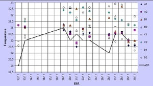 Gráfico 4: Comparação entre as temperaturas registradas em campo e no aeroporto local, à tarde, com ventos leste e nordeste