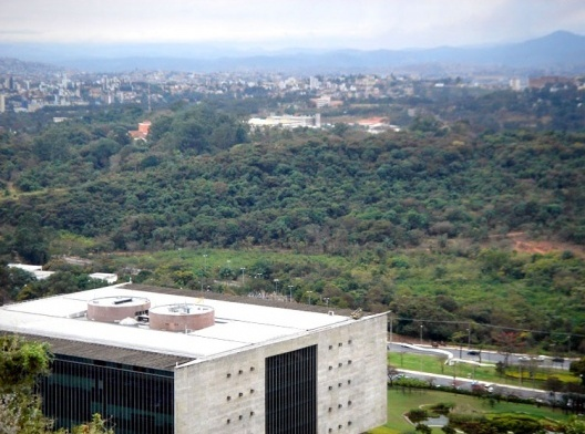 Mata do Campus da Universidade Federal de Minas Gerais, Belo Horizonte. Bem tombado em nível municipal<br />Foto Andrea Zerbetto