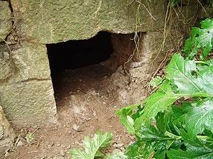Fig. 12 - Boca de entrada de cisterna do viaduto mais alto, difícil de localizar por encontrar-se coberta pela vegetação.