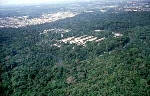 Vista aérea do Campus da Universidade do Amazonas, Manaus, 1970-1980, Arquiteto Severiano Porto