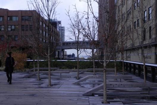 High Line. Inverno<br />Foto Ana Carolina Ferreira Mendes