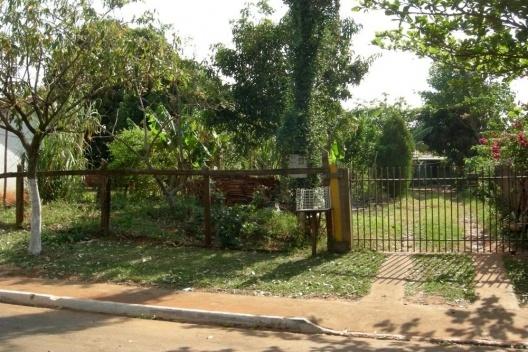Pomar localizado na frente do lote em Pitangueiras/PR<br />Foto das autoras