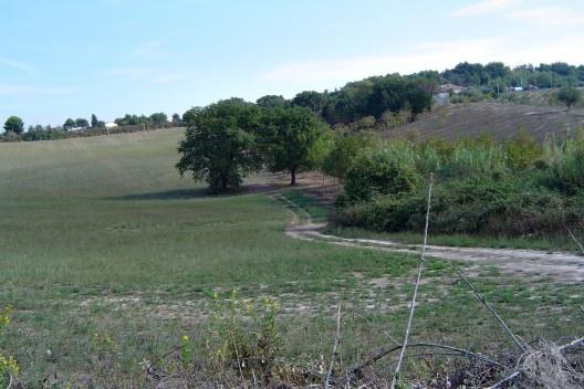 Caminhos na paisagem rural.<br />Foto M. Bocci