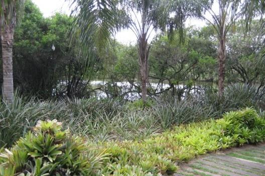 Conceito de ecogênese de Fernando Chacel: desenho de parques com ecossistemas de mangue e restinga, na Peninsula das terras baixas de Jacarepaguá<br />Foto Cecilia Herzog