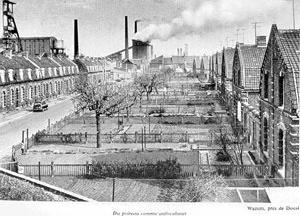Agricultura urbana nos jardins industriais como estratégia de domesticação da classe operária [MURARD, Lion; ZYLBERMAN, Patrick]