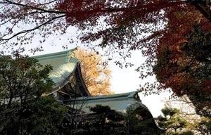 Fig. 5 – Árvores obstruem a visão direta do Santuário de Oji, Tóquio [Fonte: Tom Boechat, 2006]