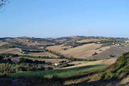 A paisagem rural nos arredores da cidade.<br />Foto M. Bocci