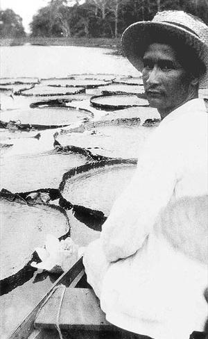 """Mário de Andrade, """"Na lagoa de Amanium / Perto do Igarapé de Barcarena / Manaus / Minha obra prima"""", fotografia, 7 junho 1927 [Acervo Arquivo Mário de Andrade, IEB USP]"""