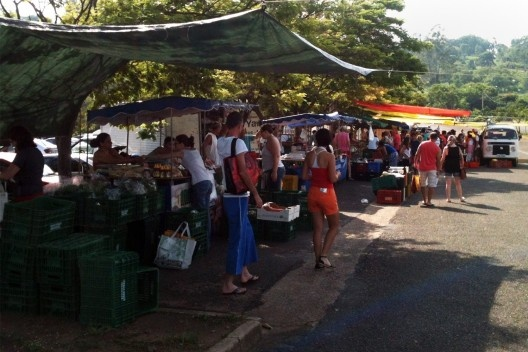 A feira de orgânicos que ocorre todos os domingos no estacionamento do Parque Ecológico<br />Foto Roberto Bottura