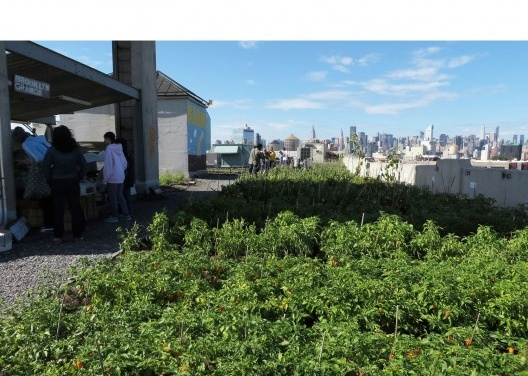 Vista da fazenda Brooklyn Grange em um teto no bairro do Queens, em Nova York: outubro passado emum sábado de manhã. A feira está no lado esquerdo e a vista de Manhattan ao fundo. <br />Foto Cecilia Herzog