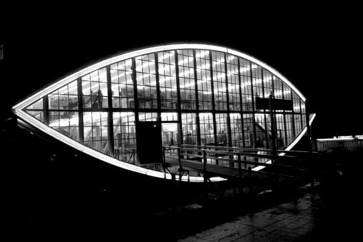 Explorando o efeito noturno, a fotografia realça a forma insólita do Mata-borrão [Acervo João Alberto Fonseca da Silva/ UniRitter]
