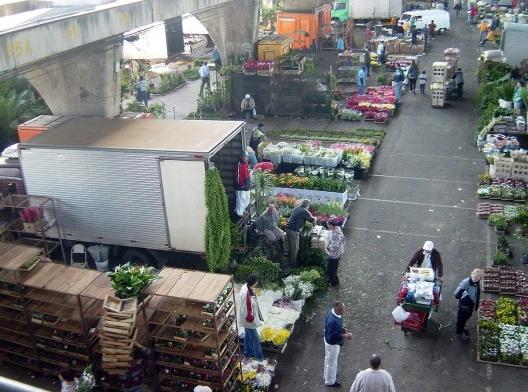 Mercado de flores, Ceagesp, São Paulo<br />Foto Gervacio Rosales  [Wikimedia Commons]