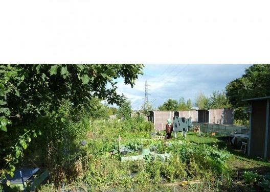 """""""Jardin Familliaux et Colectifs"""" (Jardim Familiar e Coletivo): esse é perto do Parque Chemin de l´Île Park que fica ao longo do Sena, em Nanterre – uma cidade vizinha de Paris. As hortas ficam sob as linhas de transmissão de energia, com os allotment gard<br />Foto Cecilia Herzog"""