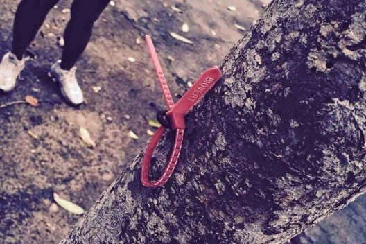Ação de grupos de proteção ao Parque do Flamengo<br />Foto divulgação  [Acervo Sonia Rabello]