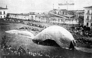 Tentativa de inflagem do balão Santa Maria de Belém.  [Scientific American Brasil. São Paulo, Ediouro; Segmento-Duetto, nº 19, dez. 2003. p. 21]