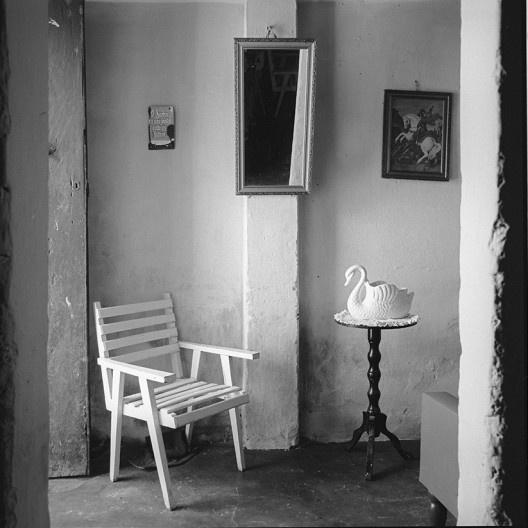 Interior de casa com cisne, Piaçabuçu AL, 1991<br />Foto Cristiano Mascaro