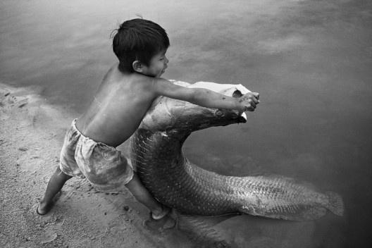 Menino carajá com pirarucu, Tocantins, 1992<br />Foto Araquém Alcântara