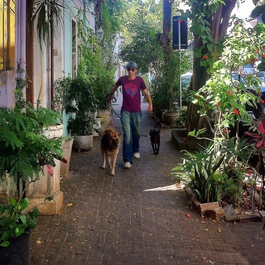 """""""Andar é acionar os cinco sentidos. É estabelecer uma relação visualmente intensa e íntima com a cidade"""".<br />Foto Abilio Guerra"""