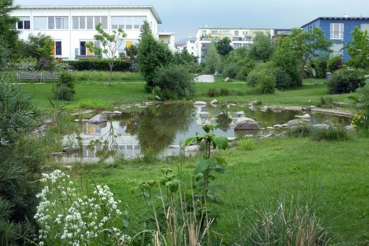 Rieselfeld, Frieburg<br />Foto Cecilia Herzog