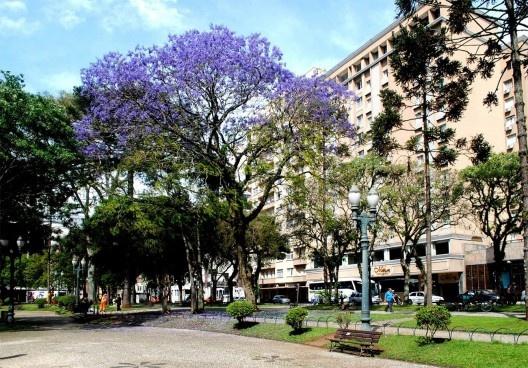 Praça Santos Andrade, Curitiba<br />Foto Salvador Gnoato
