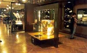 Grande Galeria da Evolução, Paris. O Homem e a evolução