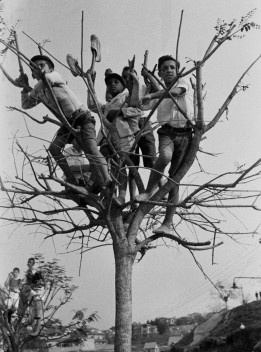 Meninos assistindo a jogo de fora do Pacaembu, São Paulo, 1941<br />Foto Thomaz Farkas  [Acervo Instituto Moreira Salles]