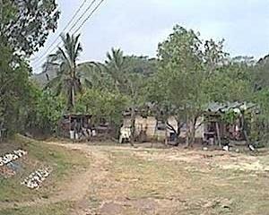 Fig. 5 a 8 – Características del asentamiento San Enrique (El Sapo)
