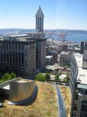 Fotografia de um teto verde no edifício da prefeitura de Seatlle – Washington – Estados Unidos