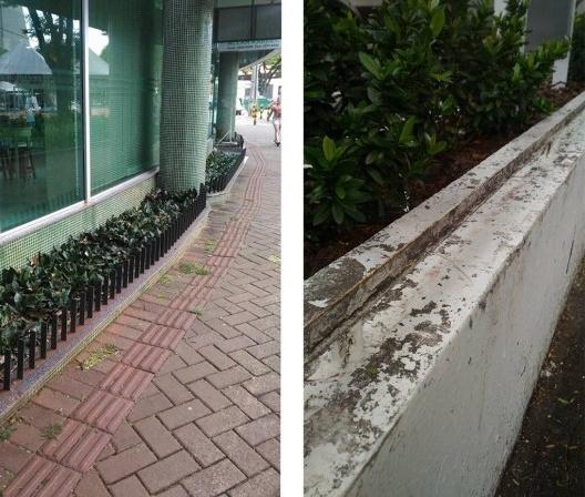 À esquerda, estrutura metálica em jardim; ferro pontiagudo instalado em canteiros, Maringá PR<br />Foto Vinícius de Moraes Ribeiro