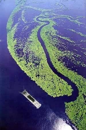 05 de outubro de 2003: Em algum lugar da Amazônia