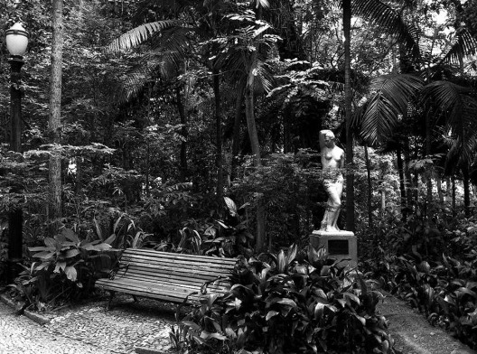 Parque Trianon, área de reflorestamento, São Paulo<br />Foto Abilio Guerra
