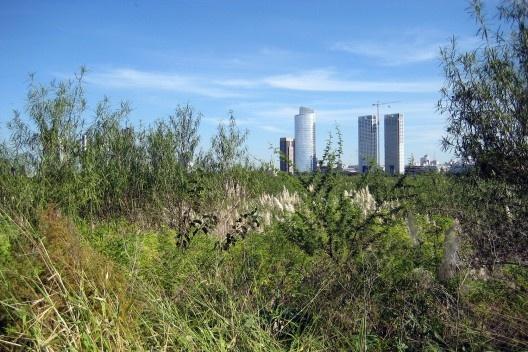 Parque Ecológico Costanera Sur, Buenos Aires<br />Foto Cecilia Herzog