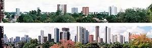 Figura 01 – Vistas panorâmicas do bairro de Casa Forte, com o skyline definido pelos edifícios: acima, dezembro de 1989; abaixo, outubro de 2004<br />Foto Claudia Loureiro
