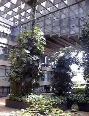 Sede da Reitoria da Universidade de Brasília, 1972. Arquitetos Paulo Zimbres, Vera Braun Galvão e Josué Macedo
