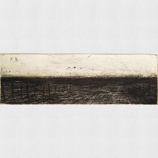 Gravura de Manassses Muniz, exposição <i>O estado da arte no ofício</i><br />Imagem divulgação